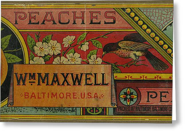 Labelled Greeting Cards - Fruit Label 1880. Wm Maxwell Peaches Baltimore Greeting Card by Pierpont Bay Archives