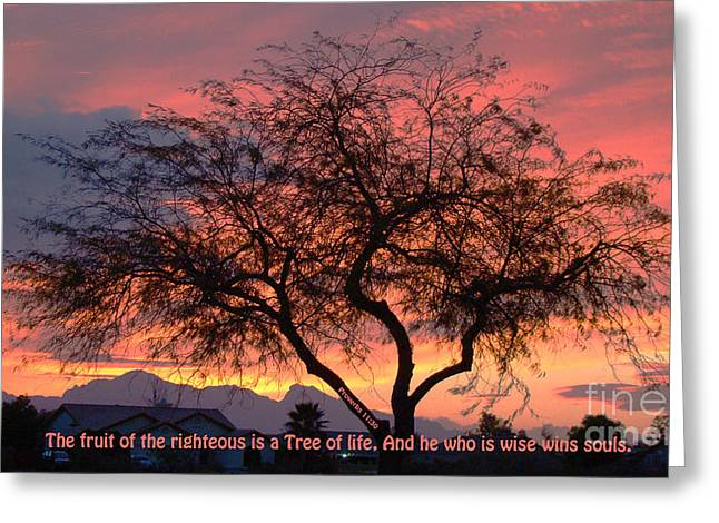 Fruit Tree Art Greeting Cards - Fruit of The Righteous Greeting Card by Beverly Guilliams