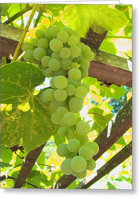 Clusters Of Grapes Greeting Cards - Fruit of the Vine Greeting Card by Brooks Garten Hauschild
