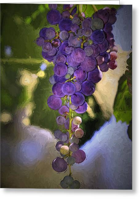 Round Leaves Greeting Cards - Fruit of the Vine Greeting Card by Donna Kennedy