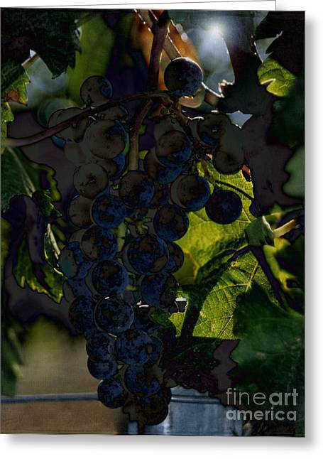 Concord Greeting Cards - Fruit of the Vine Greeting Card by Sharon Elliott