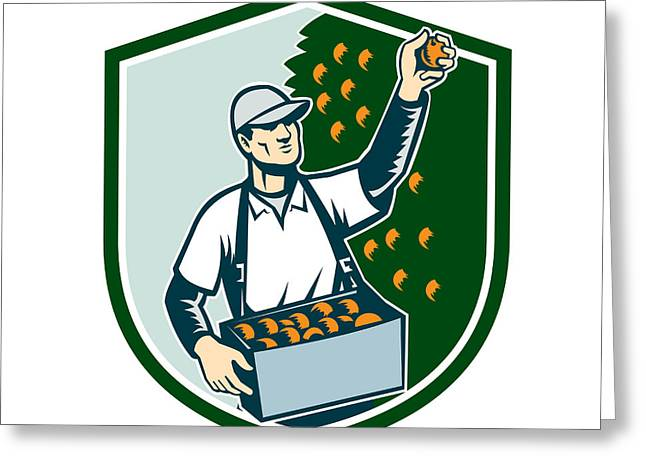 Fruit Picker Worker Picking Plum Shield Greeting Card by Aloysius Patrimonio