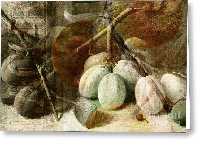 White River Scene Mixed Media Greeting Cards - Fruits background Greeting Card by Art World