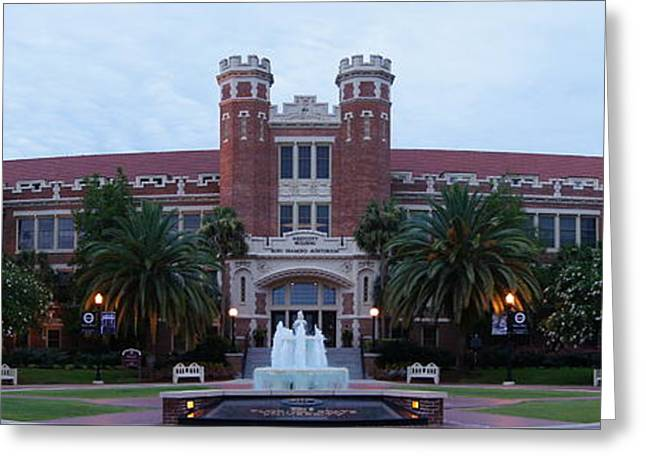 Noles Greeting Cards - Fsu Greeting Card by Paul  Wilford