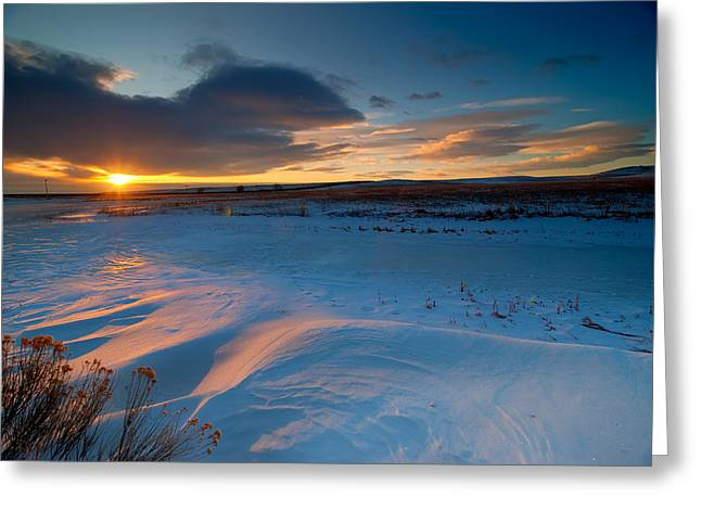 Fort Collins Photographs Greeting Cards - Ft Collins Snow Sparkles Greeting Card by Preston Broadfoot