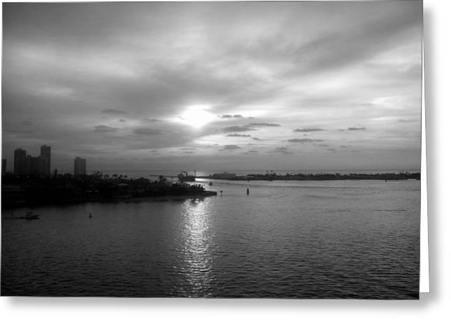 Carolyn Stagger Cokley Greeting Cards - Ft Lauderdale Rising Bw Greeting Card by Carolyn Stagger Cokley