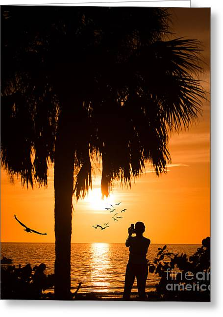 Ft. Meyers Beach Greeting Cards - Ft Meyers Beach at Sunset Greeting Card by Anne Kitzman