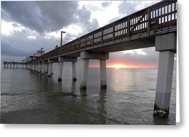 Fort Meyers Greeting Cards - Ft. Meyers Beach Pier Greeting Card by Tracy Mendez