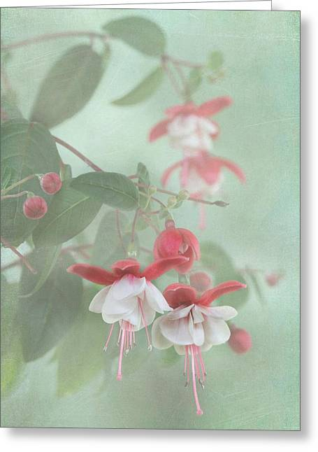 Enhanced Greeting Cards - Fuchsia Dreams Greeting Card by Angie Vogel