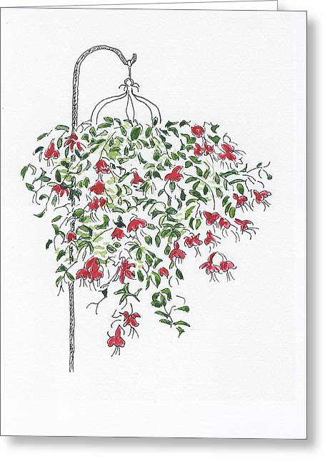 Hanging Planter Greeting Cards - Fuchsia Greeting Card by Sandra Norris