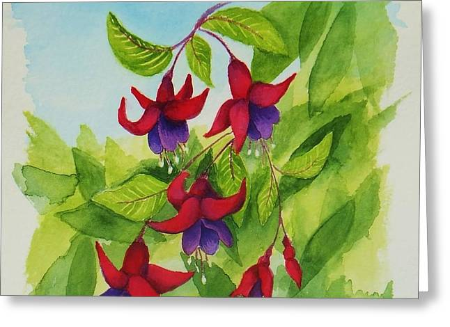 Fuchsias Greeting Card by Katherine Young-Beck