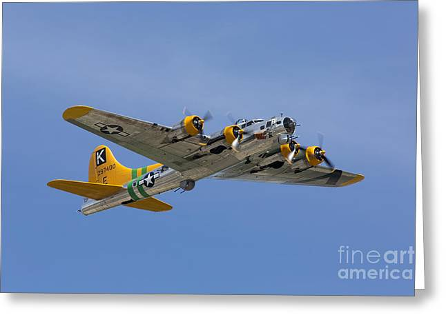 Planes Of Fame Greeting Cards - Fuddy Duddy Greeting Card by John Daly