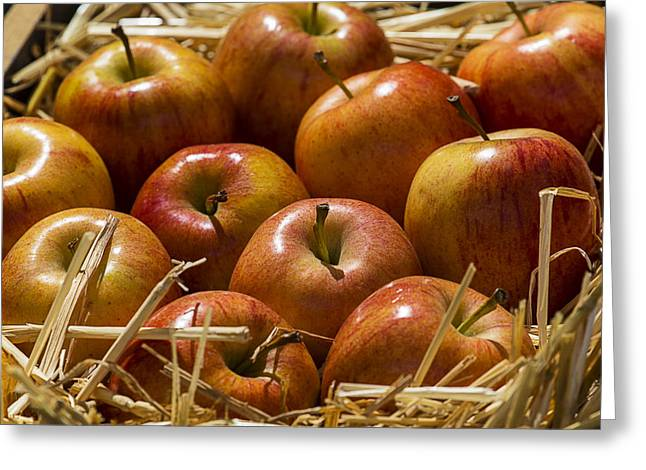 Apple Greeting Cards - Fuji Apples Greeting Card by Garry Gay