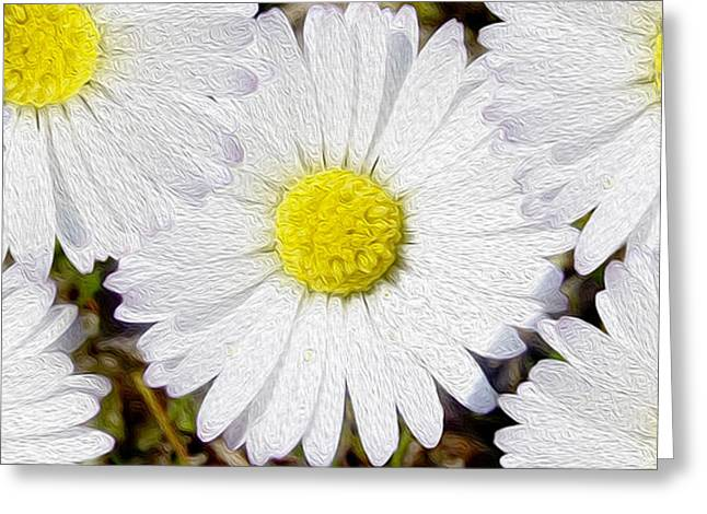 Daisies Mixed Media Greeting Cards - Full Bloom Greeting Card by Jon Neidert