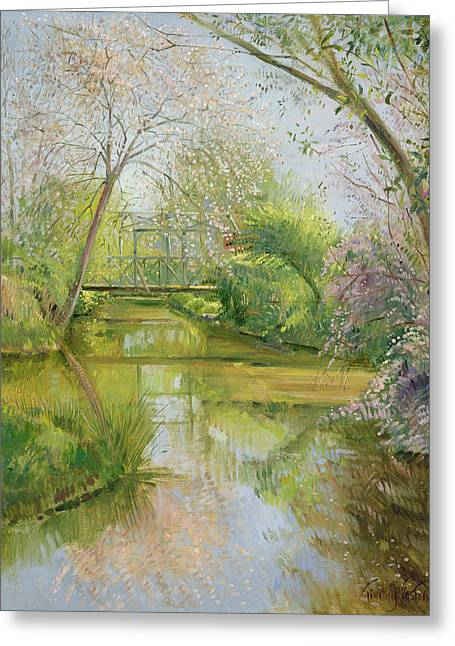 C20th Greeting Cards - Full Blossom Oil On Canvas Greeting Card by Timothy Easton