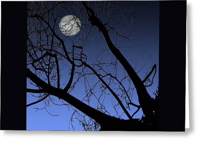 Full Moon And Black Winter Tree Greeting Card by Ben and Raisa Gertsberg