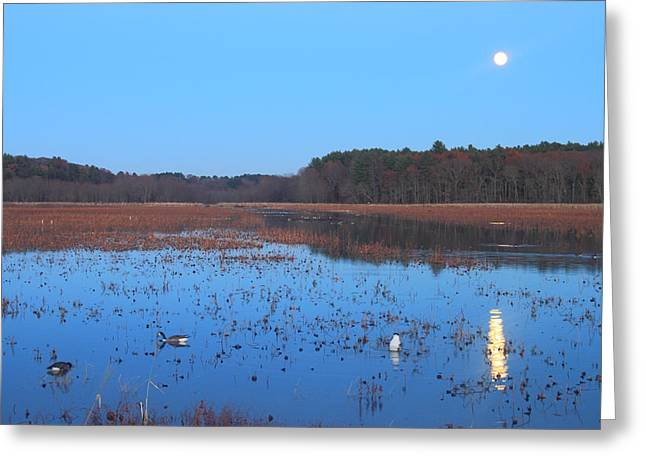 Concord Massachusetts Photographs Greeting Cards - Full Moon at Great Meadows National Wildlife Refuge Greeting Card by John Burk