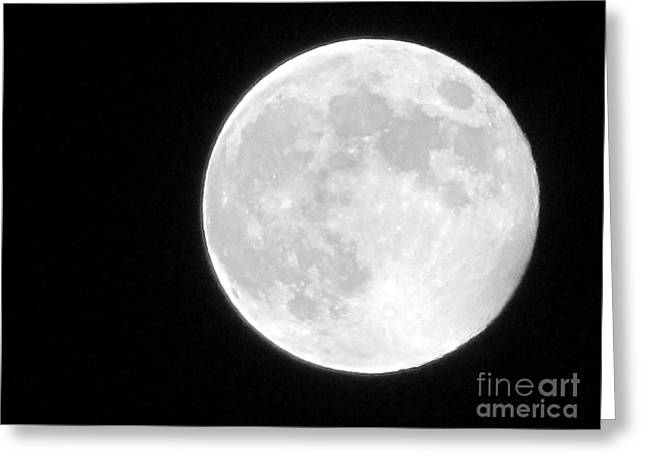Man In The Moon Greeting Cards - Full Moon Greeting Card by Gayle Melges
