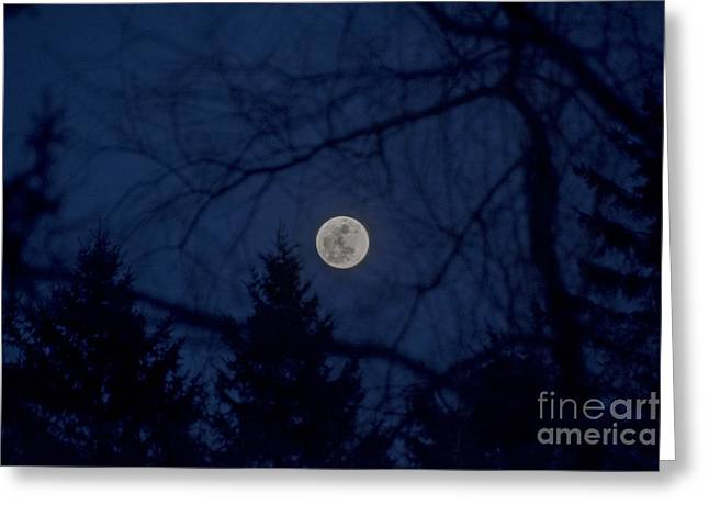 Astro Images Greeting Cards - Full Moon Light Greeting Card by Cheryl Baxter