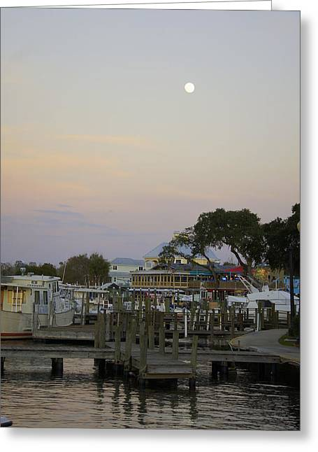 Sea Moon Full Moon Greeting Cards - Full Moon Over Homosassa Greeting Card by Laurie Perry