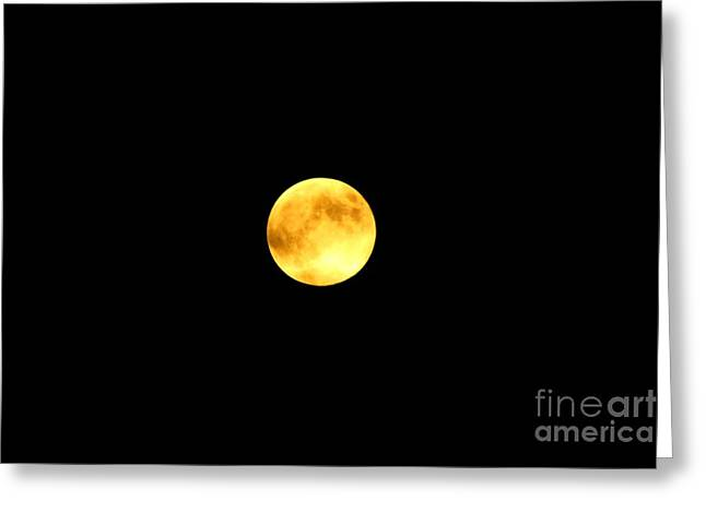 Selenic Greeting Cards - Full Moon Greeting Card by Patti Whitten