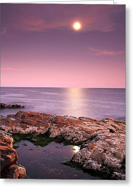 Full Moon Reflection Greeting Card by Juergen Roth