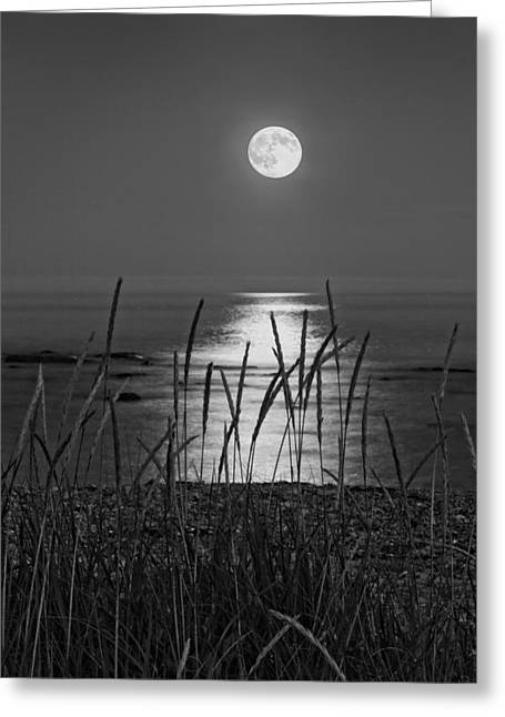 New England Ocean Digital Art Greeting Cards - Full Moon Seawall Beach Acadia National Park Greeting Card by Keith Webber Jr
