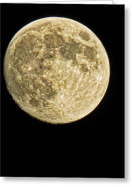 Man In The Moon Greeting Cards - Full Moon with something passing by it... Greeting Card by Robert Neiszer
