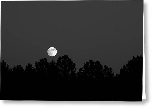 Chiara Greeting Cards - Moonrise Over Oxford Furnace Lake Greeting Card by Rocco Chiara