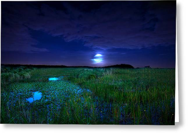 Full Moons And Fireflies Greeting Card by Mark Andrew Thomas