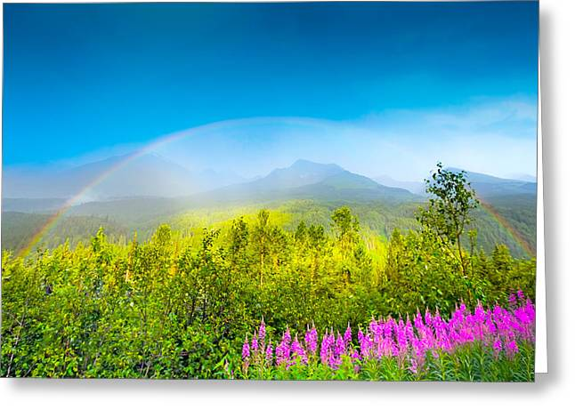 Summer Storm Greeting Cards - Full Spectrum Rainbow Greeting Card by Jodi Jacobson