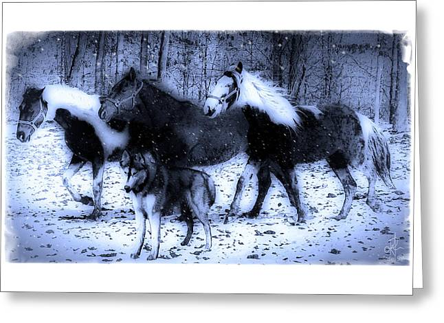 Husky Greeting Cards - Fun in the Snow Greeting Card by Pennie  McCracken