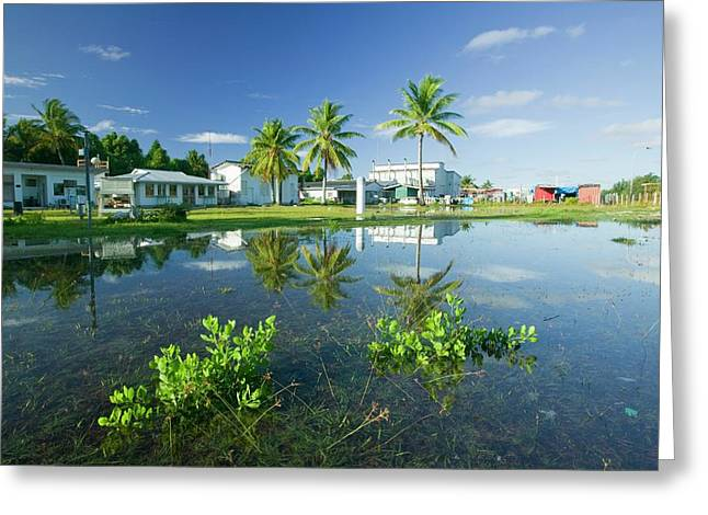 Funafuti Being Flooded By Sea Water Greeting Card by Ashley Cooper