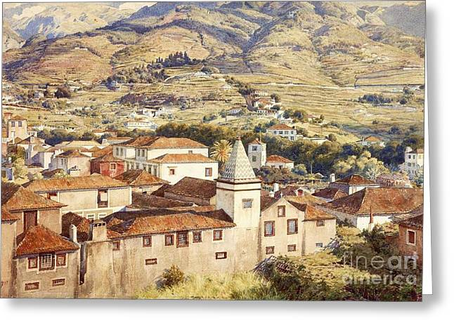 Poynter Greeting Cards - Funchal - Morning Sun Greeting Card by Pg Reproductions