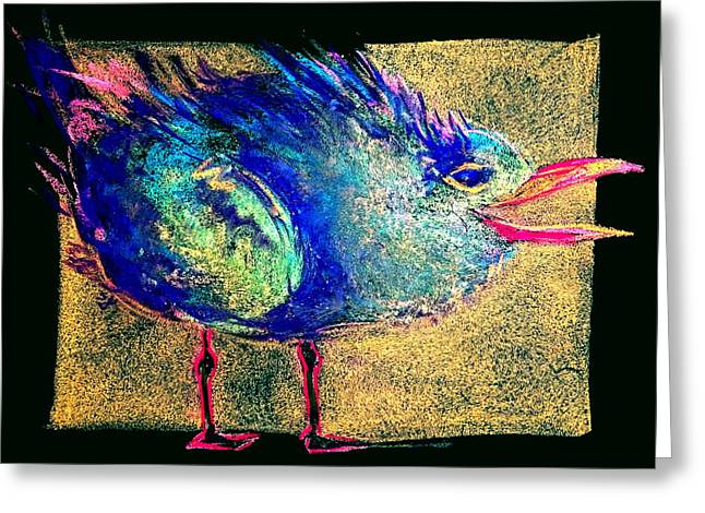 Tern Greeting Cards - Funky Baby Tern Hungry Squawk Art Prints Greeting Card by Sue Jacobi