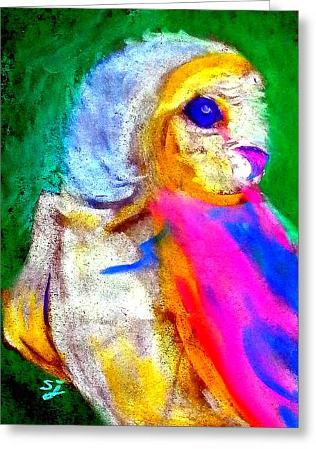 Unique Owl Greeting Cards - Funky Barn Owl Art Print Greeting Card by Sue Jacobi