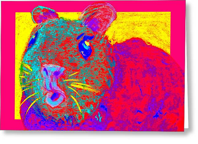 Fauvist Wildlife Art Greeting Cards - Funky Guinea Pig Greeting Card by Sue Jacobi