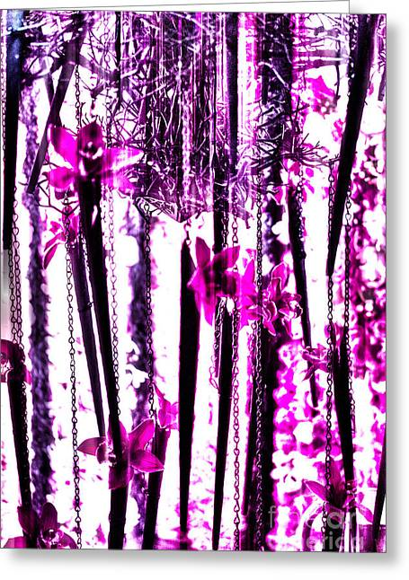 Silk Screen Greeting Cards - Funky Pink Flowers Greeting Card by Tom Gari Gallery-Three-Photography
