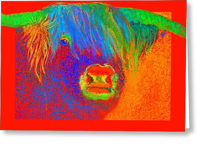 Fauvist Wildlife Art Greeting Cards - Funky Scottish Highland Cow Wildlife Art Prints Greeting Card by Sue Jacobi