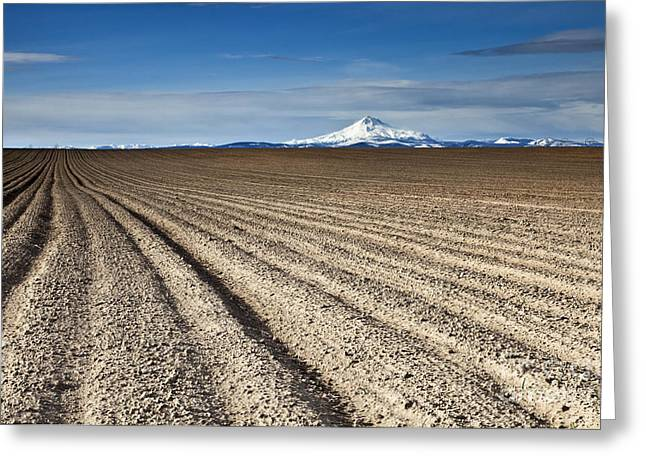 Mt Greeting Cards - Furrows Greeting Card by Mike  Dawson