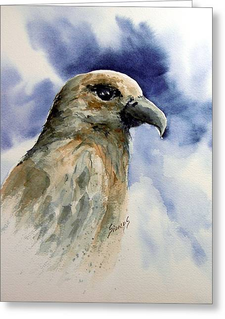 Hawk Bird Greeting Cards - Fury Greeting Card by Sam Sidders