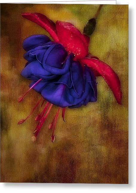 Fuschia Greeting Cards - Fuschia Flower Greeting Card by Susan Candelario