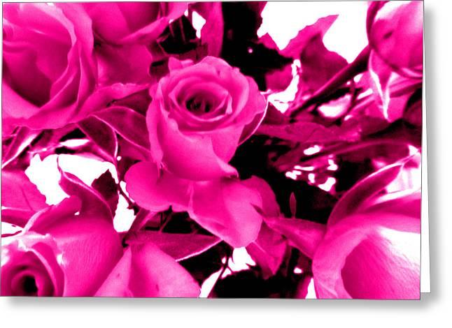 Fushia Greeting Cards - fushia Roses Greeting Card by Louise Grant