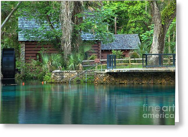Spring Mill Greeting Cards - Fuzzy Reflections Of The Juniper Springs Mill Greeting Card by Adam Jewell