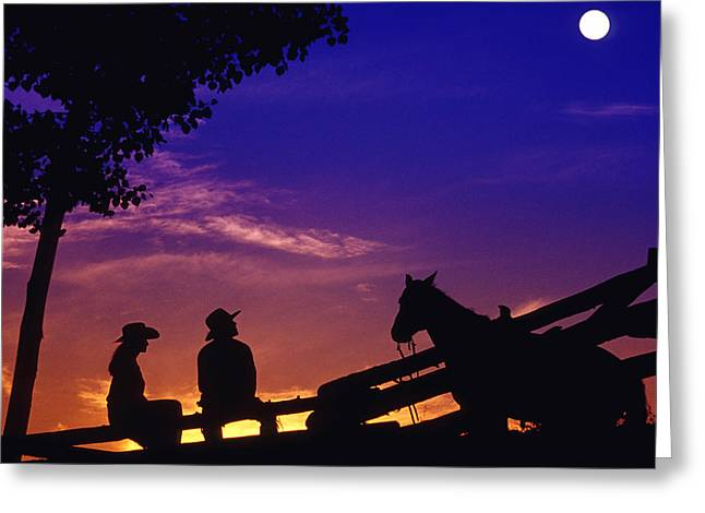 Silhouettes Of Horses Greeting Cards - Fv5269, Chris Harris Cowboy And Cowgirl Greeting Card by Chris Harris
