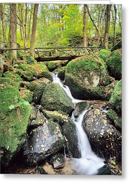 Gaisholle Waterfall In Autumn Greeting Card by Panoramic Images