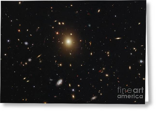 Large Scale Greeting Cards - Galaxy Cluster Abell 2261, Hst Image Greeting Card by Nasa/esa/m. Postman (stsci), T. Lauer (noao), And The Clash Team