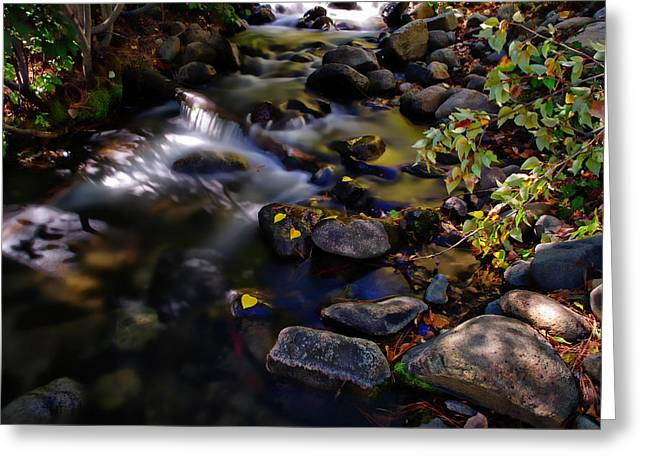 Nevada State Park Greeting Cards - Galena Creek Fall Waterfall Greeting Card by Scott McGuire