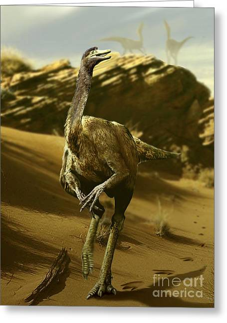 Animal Paw Print Greeting Cards - Gallimimus Walking A Barren Landscape Greeting Card by Jan Sovak