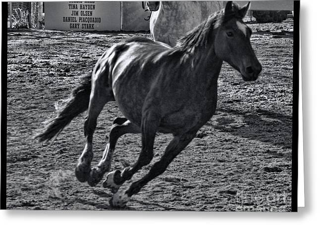 Cave Creek Cowboy Greeting Cards - Gallop 2 Greeting Card by Tommy Anderson